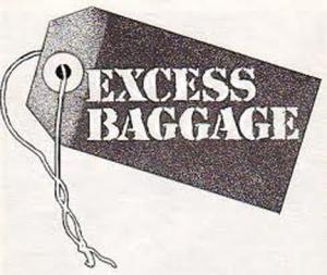 blogsimplicityExcessbaggage